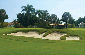 Sand Bunkers are functional and beautiful.