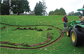 Carefull planning is required for good golf coarse bunker design